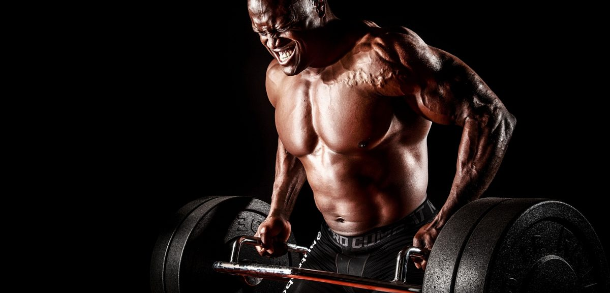 The Way To Build Big Arms Fast