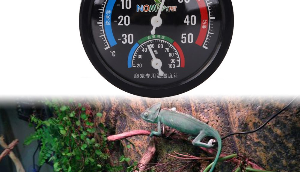 Leading Finest Reptile Thermometers Evaluations 2020